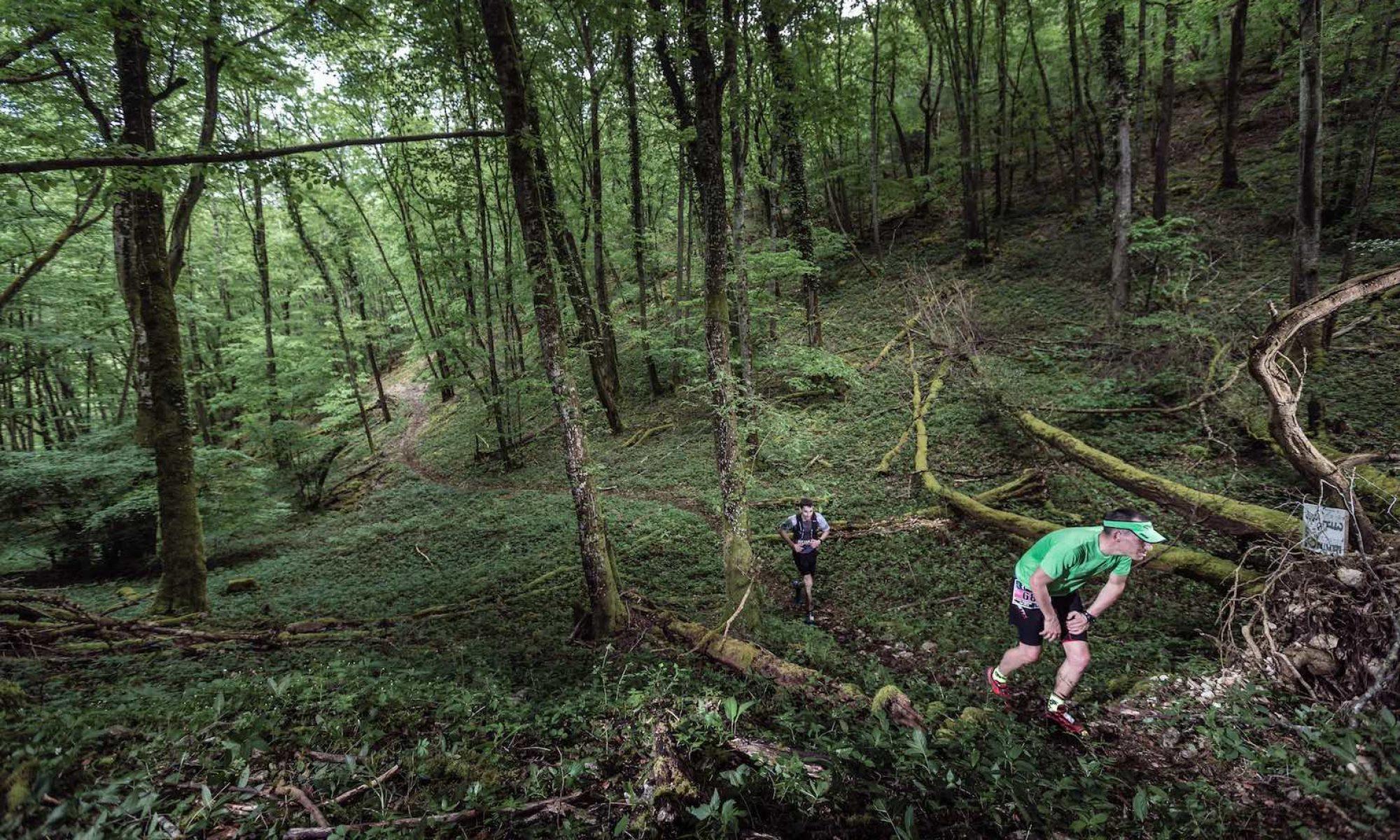 4ème édition du Trail de la Chouette DIJON 28 avril 2019